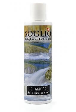 Shampoo für normales Haar